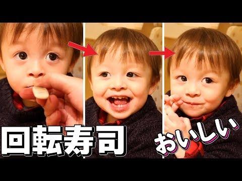 回転寿司 赤ちゃん しぃしぃ 食べ盛り!茶碗蒸し大好き!ドラゴンボール対決【いおりくんTV 日常と休日】