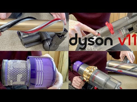 Dyson V11 Absolute Update & Maintenance Tips