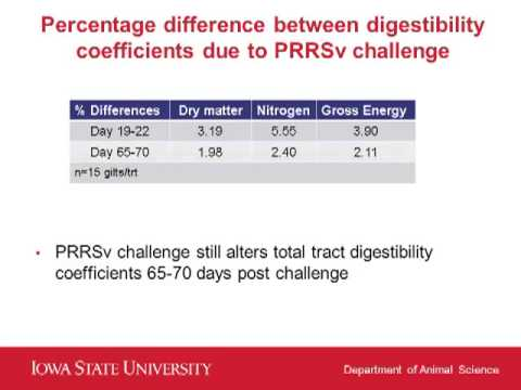 Dr. Nick Gabler - The impact of grow-finisher feed efficiency due to PRRSV