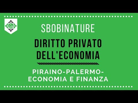 Sbobinature diritto privato dell'economia Piraino Economia e Finanza Palermo