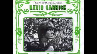 David Garrick - Don
