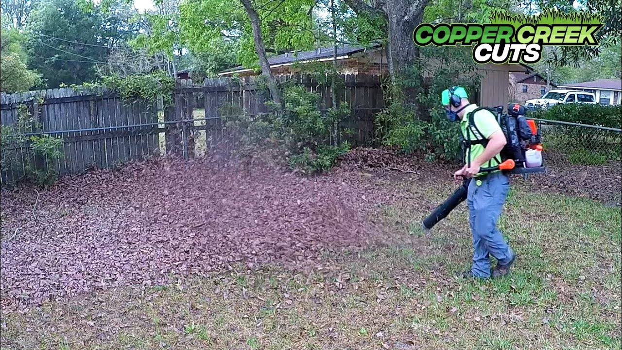 ASMR Hedge Trimmer & Leaf Blower Sounds To Sleep Or Study To...