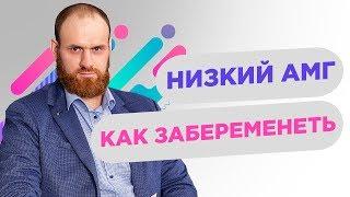 низкий АМГ.  Фолликулы в засаде| Павел Науменко