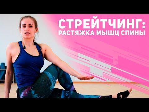 Упражнения на растяжку Комплекс упражнений на растяжку в