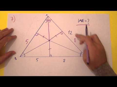 9. Sınıf 2. Dönem 2. Yazılı Soruları Şenol Hoca Matematik