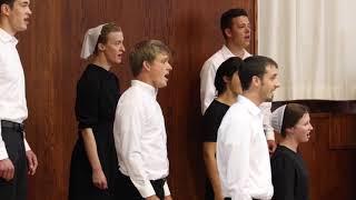 Joy in the Morning - Shenandoah Christian Music Camp