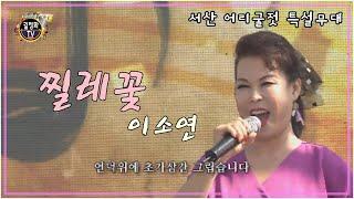 [길정화TV] 이소연 -  찔레꽃 (서산 간월도 어리굴…