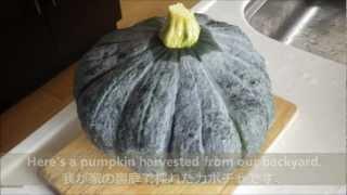 Pumpkin Soup Cooking