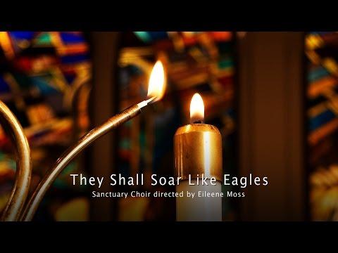 They Shall Soar Like Eagles - Laura Manzo