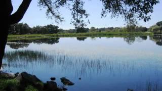 187.BARRAGEM MARECHAL CARMONA - IDANHA A NOVA.wmv