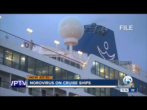 Dirty Dining: 10 Florida cruise ships hit with norovirus in 2016 and 2017 still passed inspections