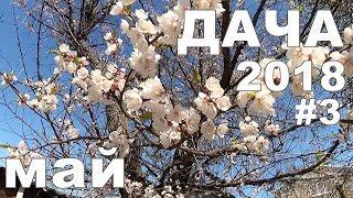 ДАЧА 2018 | Как выглядит наша дача в начале мая | май #3