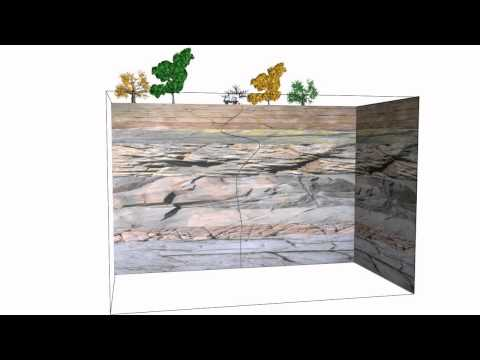 Introduction to Electro Seismic Geophysics