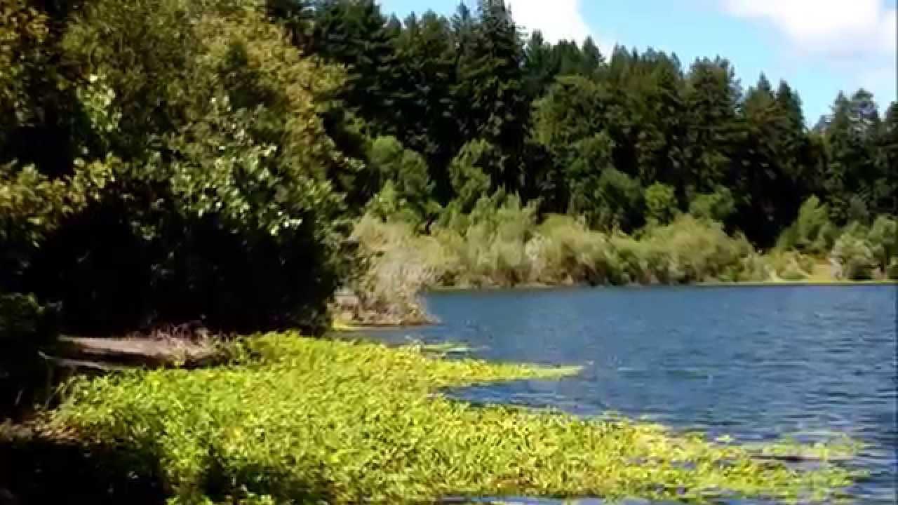 Riverfront Park Sonoma