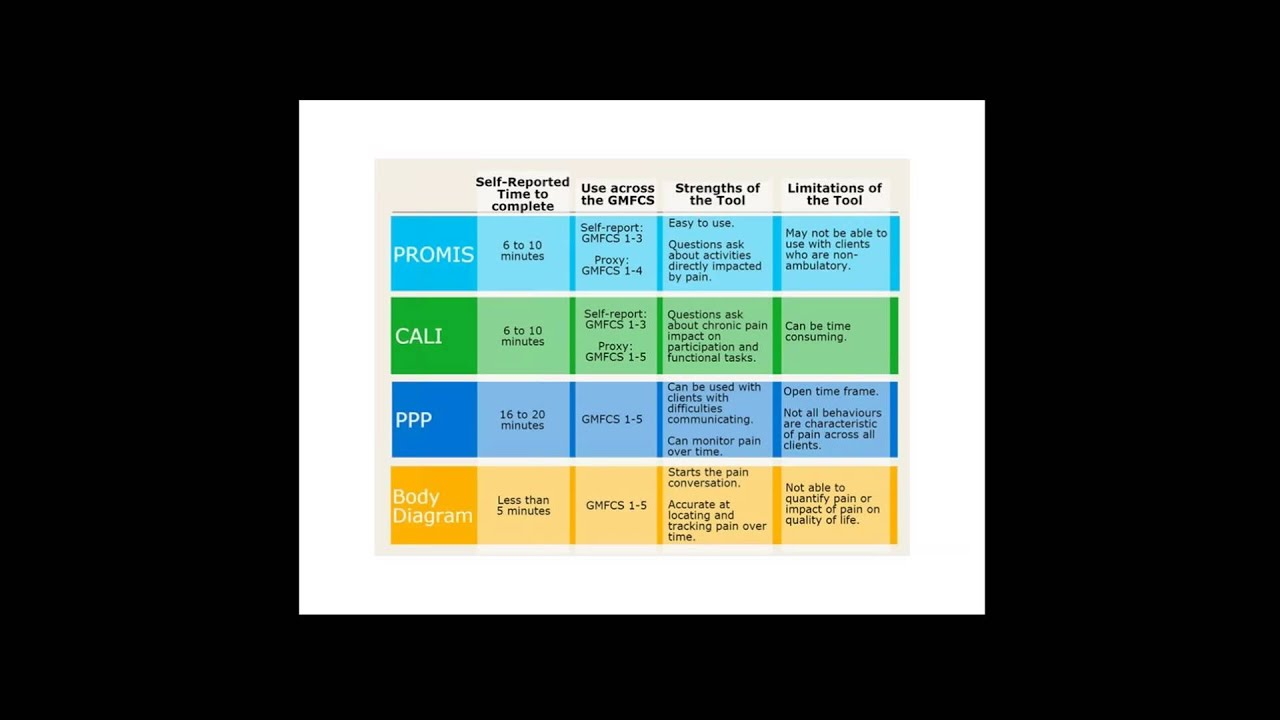 The Chronic Pain Assessment Toolbox For Children With Disabilities