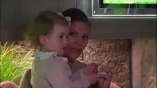 Så får kronprinsessan Victoria ihop familjelivet - Nyhetsmorgon (TV4)