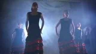 "Шоу-балет ""RIMAR"". Танец Flamenco"