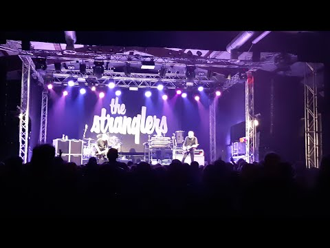 The Stranglers - Always the Sun Live in Bologna 2019