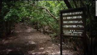 THIS IS WHY I WONT GO TO SUICIDE FOREST JAPAN! | MOE SARGI