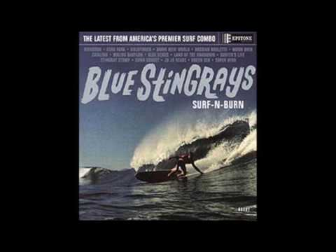 Blue Stingrays - Green Sea