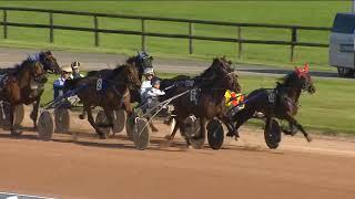 Vidéo de la course PMU GRAND PRIX DE SAINT-OUEN-DES-TOITS