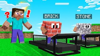 Minecraft BUT The BLOCKS ARE RUNNING! (catch them!)