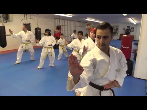 Professional Karate Training for Teens and Adults at Global Karate Do