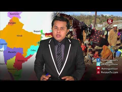 Rohingya Daily News 20 August 2017