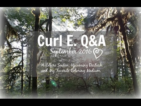 Curl E. Q&A: September 2016 ~  Wildfire Season, Upcoming Destash and My Favorite Coloring Medium