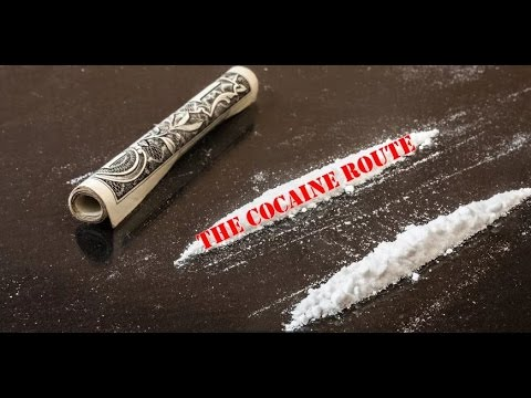Selling and Smuggling Cocaine