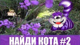 """Найди кота #2 Коты маскируются Игра """"НАЙДИ КОТА"""" за 10 секунд!"""