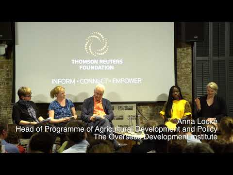 Falling Freetown + Urban Nomads – Cities, Tension and Urban Planning