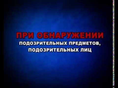 Лента событий 2016 17 учебный год Гимназия 10 ЛИК г