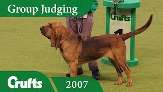 Subscribe to Crufts: http://bit.ly/CruftsSub Back at Crufts 2007, t...