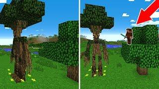 FAKİR AĞAÇTAN ADAM BULDU! 😱 - Minecraft