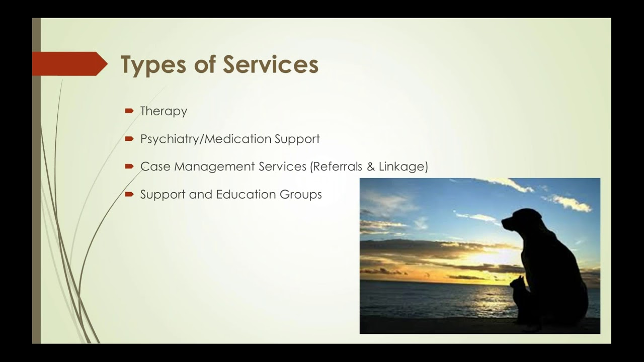 Webinar L A County Department Of Mental Health Services And