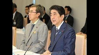 国家戦略特別区域諮問会議―平成29年5月22日