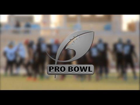 Pro Bowl 2015 highlights - EFAF