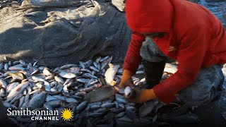 This Ancient Mongolian Fishing Method Yields 1000s of Fish  China From Above | Smithsonian Channel
