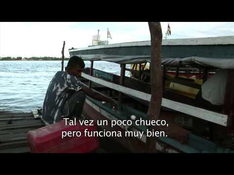 Marine Mammal Tourism in Suriname - Green  Heritage Fund