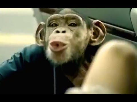 Hahaha That S Too Funny Best Trunk Monkey Commercials Youtube