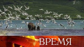 Лучшие фотографии из путешествий и яркие научные проекты отмечены Русским географическим обществом.