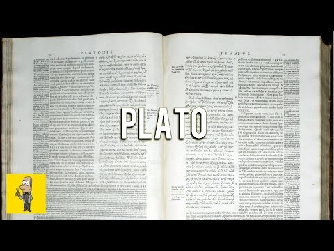 PLATO: A Very Short Introduction | Animated Book Summary