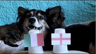Italy Vs England - Dogs Euro 2021 Final Prediction