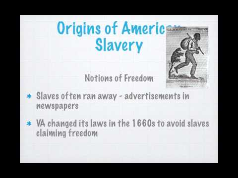APUSH Review: Give Me Liberty, Chapter 3