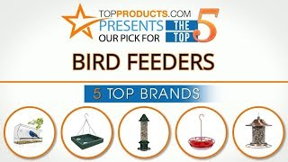 Best Bird Feeder Reviews 2017 – How to Choose the Best Bird Feeder