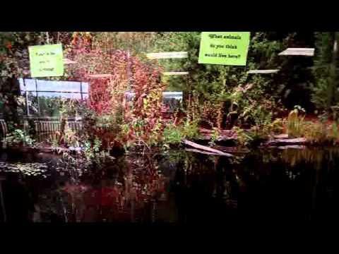 PBK Video of Atascocita Springs Elementary School