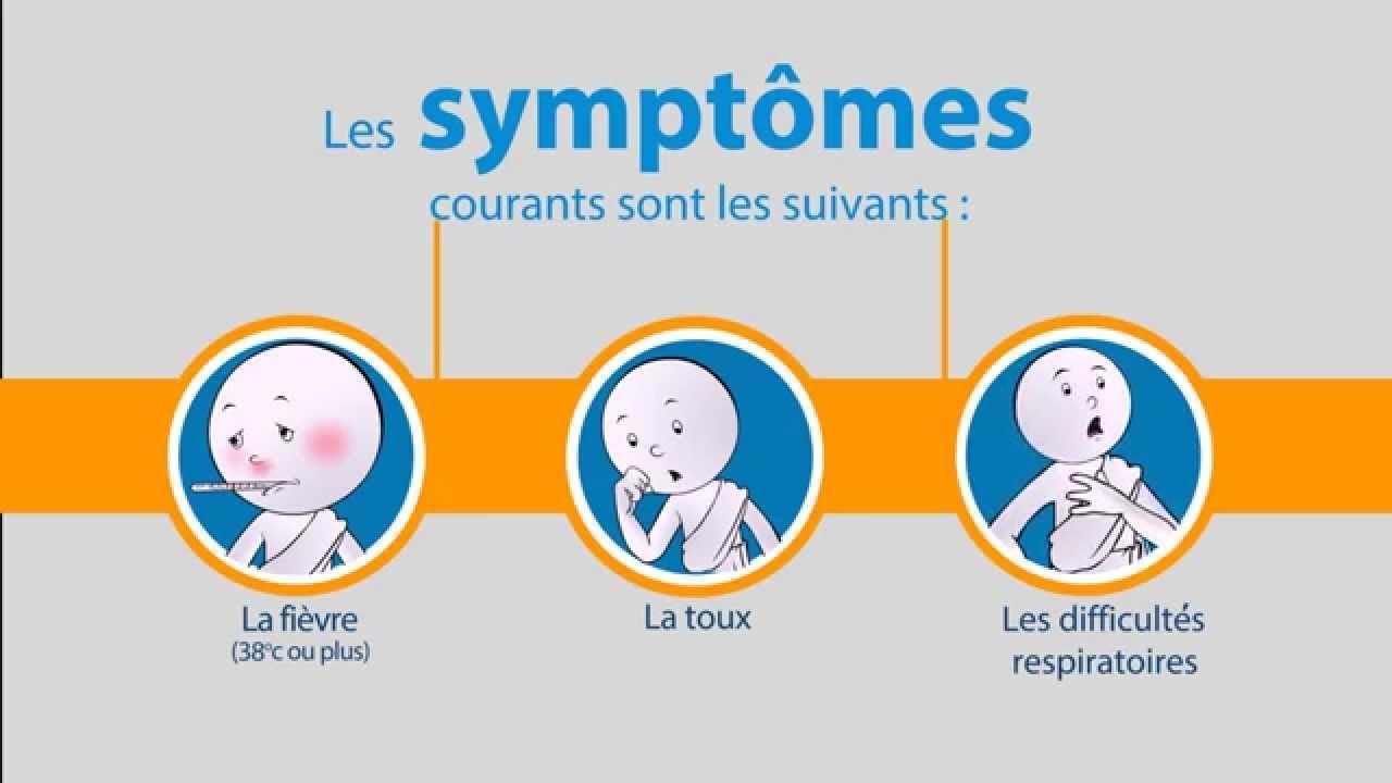 Oms Coronavirus Du Syndrome Respiratoire Du Moyen Orient