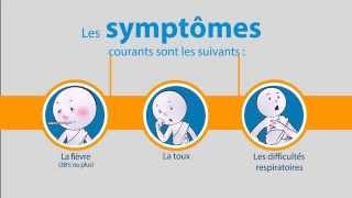 OMS: Coronavirus du syndrome respiratoire du Moyen-Orient