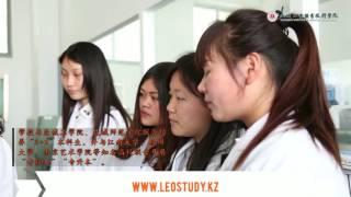 Институт промышленных технологий: Китай,  г. Янченг